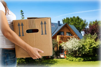 All Removals London - House Removals